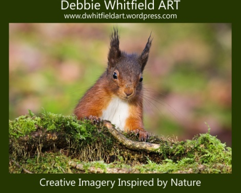 Capture Your Pet's Personality, Deb's Dog Photos, Debbie Whitfield ART, Eco Friendly Photography, Estate agent, Facebook, Interior design, IPhone, Photo shoot, Photograph, Photographer, Photography, Portrait, Portraits From Photos, Property, Real estate, Sale, Scotland, Shopping, Visual Art